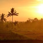 Bali, wątek religijny. Świątynia i niespodzianka od dobrych duszków